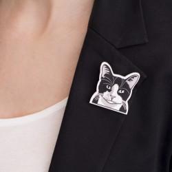 Gato común europeo blanco y negro
